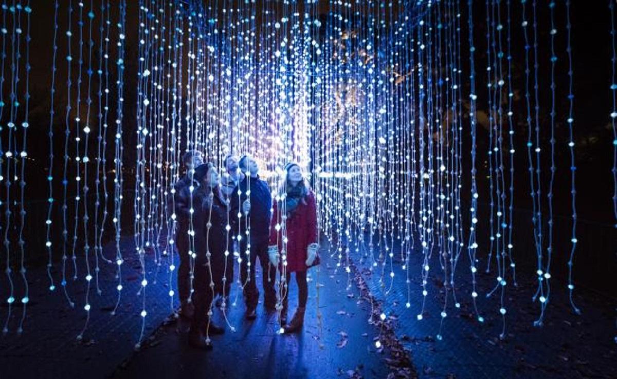 Optic Christmas Trees Uk